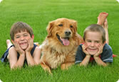 Kids and Dog enjoying Green grass